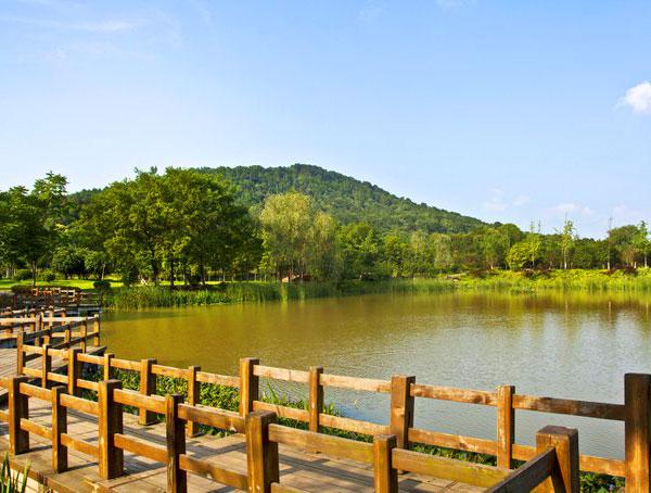 马鞍山森林公园图片
