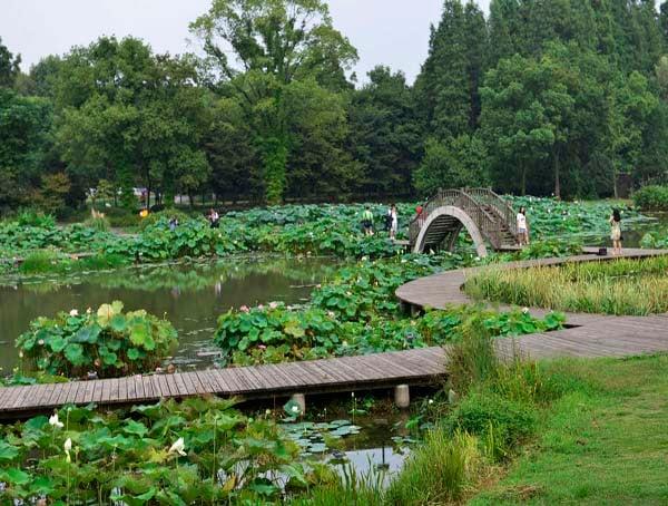 中科院武汉植物园